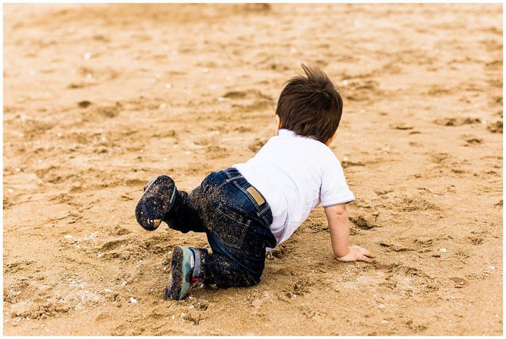 quatre pattes dans le sable