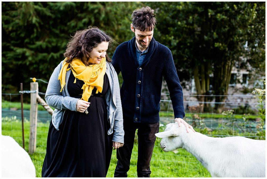 les photos d'audrey guyon d'une séance grossesse avec des chèvres en normandie