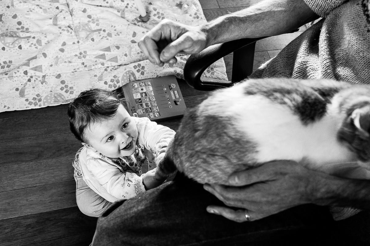 petite fille qui tire sur la queue du chat