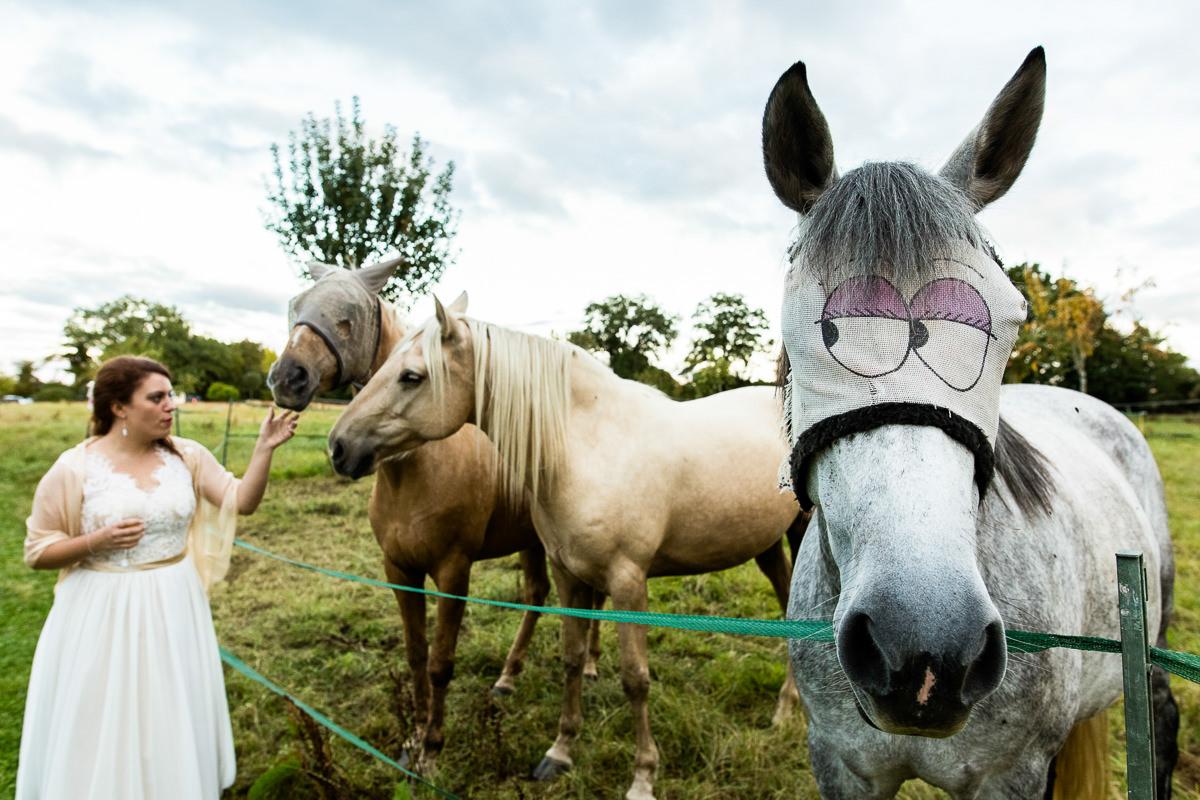 mariée avec des chevaux