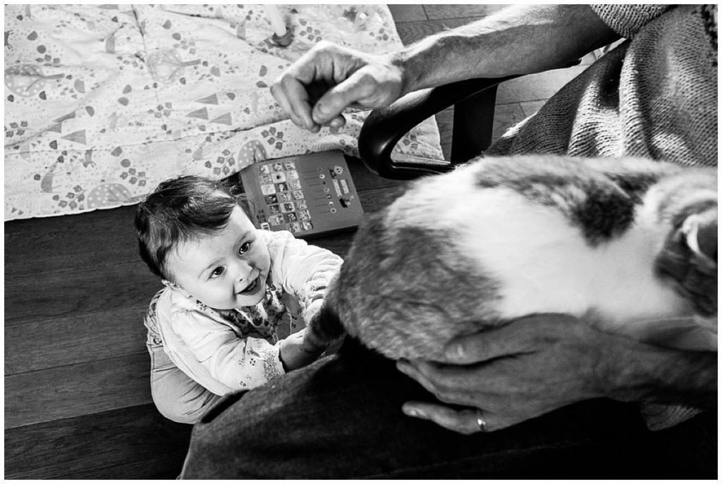 bébé qui tire sur la queue du chat photographie du quotidien