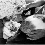 Reportage photo bébé du quotidien
